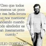 Creo que todos tenemos un poco de esa bella locura que nos mantiene andando cuando todo alrededor es tan insanamente cuerdo. Julio Cortázar.