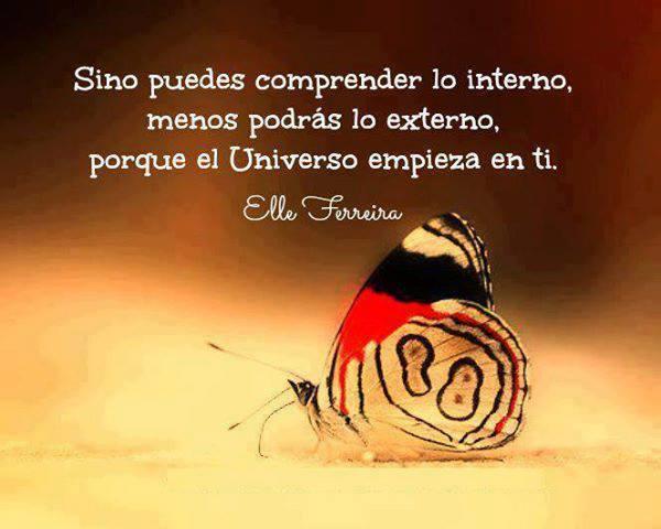 Sino puedes comprender lo interno, menos podrás lo externo, porque el Universo empieza en ti. Elle Ferreira