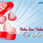 Feliz San Valentín. Te Amo