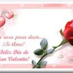 Una rosa para decir...¡Te Amo!.