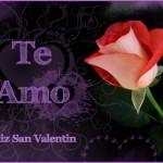 Te Amo. Feliz San Valentín