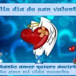 Feliz Día de San Valentín. Te amo mi vida. Muaks