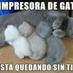 La impresora de gatos