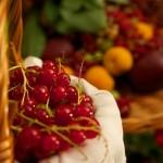 Frutas: mitos y verdades