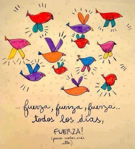 ...Fuerza, fuerza, fuerza...Todos los días, Fuerza para volar más alto.
