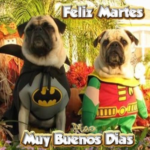 Buenos Dias Feliz Martes mi Amor Feliz Martes Muy Buenos Días