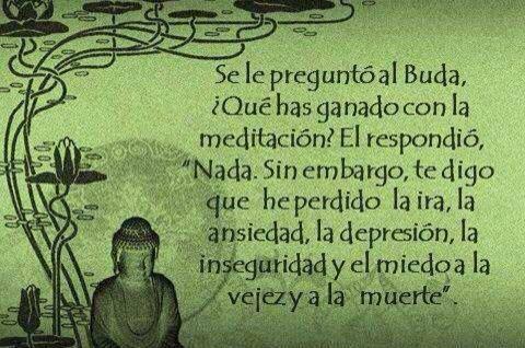 """Se le preguntó al Buda, ¿Qué has ganado con la meditación? El respondió, """"Nada. Sin embargo, te digo que he perdido la ira, la ansiedad, la depresión, la inseguridad y el miedo a la vejez y a la muerte"""""""""""