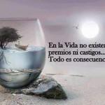 En la vida no existen premios ni castigos...