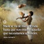 Nada se va de nuestra vida hasta que nos enseña aquello que necesitamos aprender.