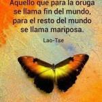 Aquello que para la oruga se llama fin del mundo, para el resto del mundo se llama mariposa. Lao-Tse