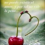 Si no existe el respeto, no puede existir el amor, y por tal no vale la pena...