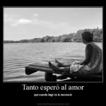 Tanto esperó al amor que cuando llegó no lo reconoció.