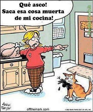 Qué asco!! Saca esa cosa muerta de mi cocina!