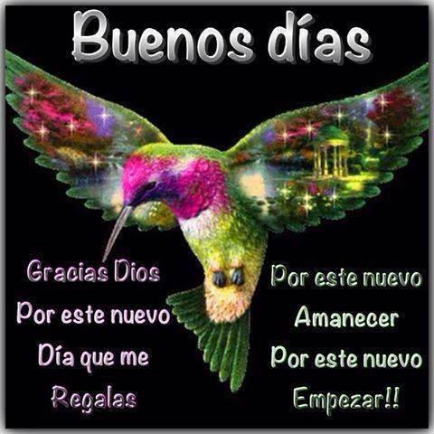 Buenos Días. Gracias Dios por este nuevo día que me regalas. Por este nuevo amanecer, por este nuevo empezar.