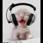 La música es mi vicio sano