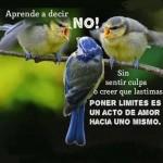 Aprende a decir No!