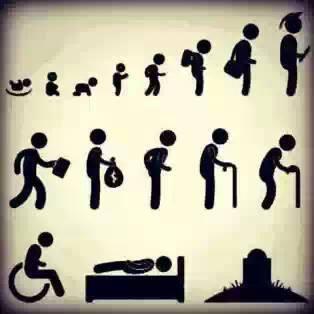 Nuestra evolución en la vida