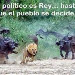 El político es Rey...hasta que el pueblo se decide.