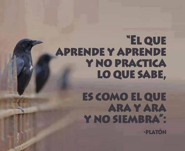 El que aprende y aprende y no practica lo que sabe, es como el que ara y ara y no siembra. Platón