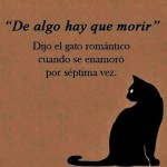 """""""De algo hay que morir"""" Dijo el gato romántico"""