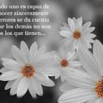 Cuando uno es capaz de reconocer sinceramente sus errores se da cuenta de que los demás no son tantos los que tienen...