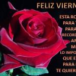 Feliz Viernes. Esta rosa es para ti, para recordarte amiga mi@, lo importante que eres para mi te Quiero.