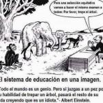 El sistema de educación en una imagen