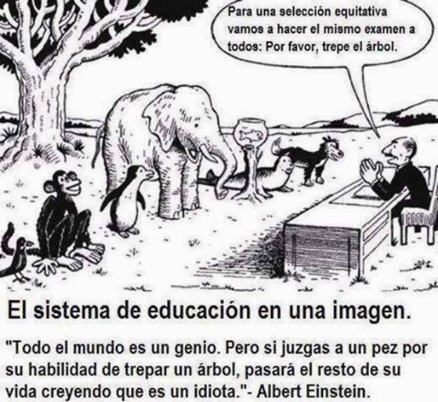 El sistema de educación en una imagen.