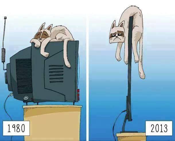 Avances tecnológicos: 1980 - 2013