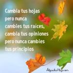 Cambia tus hojas pero no cambies tus raíces. Cambia tus opiniones pero nunca cambies tus principios