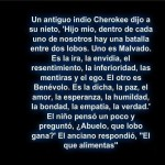 Un antiguo indio Cherokee dijo a su nieto...