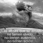 Las almas que se aman no tienen olvido, no tienen ausencia, no tienen adiós