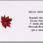 Deseando paz y amor en esta Navidad
