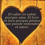 El sabio es sabio porque ama
