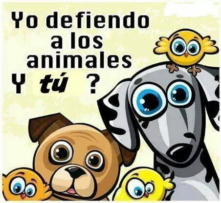 Yo defiendo a los animales. ¿Y tú?
