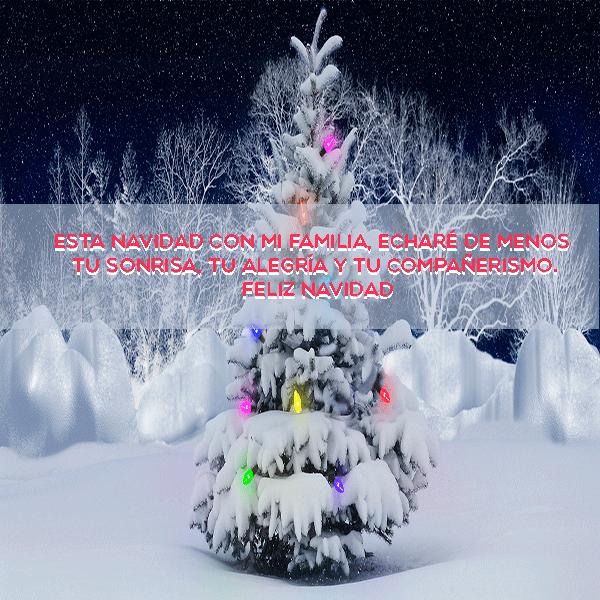 Esta navidad con mi familia echaré de menos tu sonrisa, tu alegría y tu compañerismo. Feliz Navidad