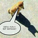 Soy Batman!!!!!!!!