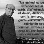 Un animal no puede defenderse. Si tu estás disfrutando con el dolor, la tortura, te gusta ver como está sufriendo ese animal... entonces no eres humano, eres un monstruo