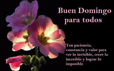 Buen domingo para todos. Ten paciencia constancia y valor para ve lo invisible, creer lo increíble y logar lo imposible