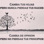 Cambia tus hojas pero nunca pierdas tus raíces. Cambia de opinión pero no pierdas tus principios