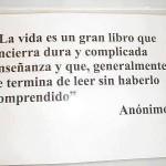 La vida es un gran libro
