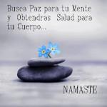 Busca paz para tu mente