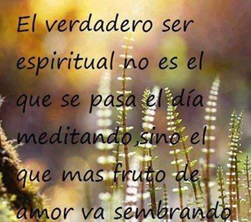 El verdadero ser espiritual no es el que se pasa el día meditando, sino el que mas fruto de amor va sembrando