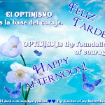 Feliz Tarde ƸӜƷ Happy Afternoon