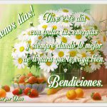 daisies_margaritas-y-frutas
