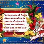 Merry Christmas,Feliz Viernes!