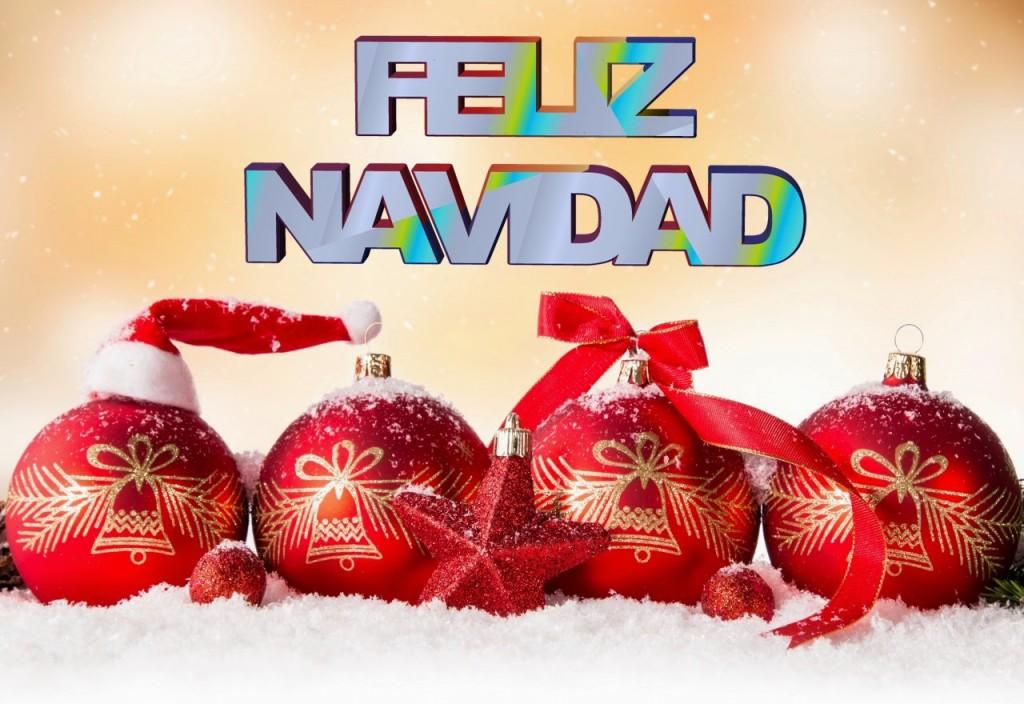 No existe la Navidad ideal, solo la Navidad que usted decida crear como reflejo de sus valores, deseos, queridos y tradiciones.