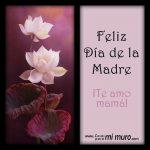 Feliz Día de la Madre. ¡Te amo mamá!