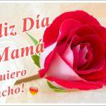 Feliz Día Mamá. Te Quiero mucho!!!