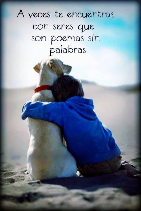 A veces te encuentras con seres que son poemas sin palabras.